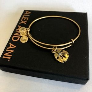 Alex and Ani Bangle Bracelet